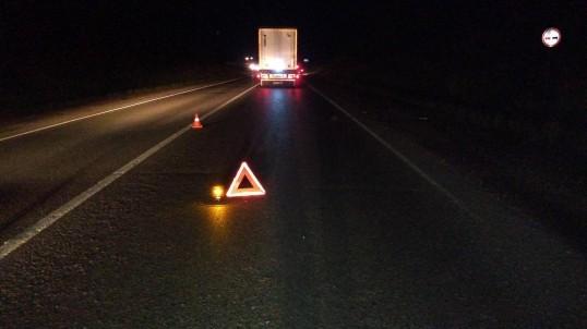 На трассе Пермь-Екатеринбург насмерть сбили пешехода