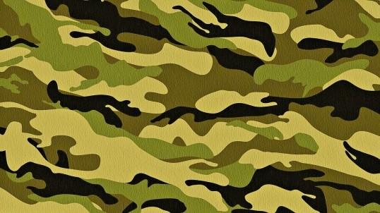 Уклониста от армии из Кунгурского района могут посадить на 2 года