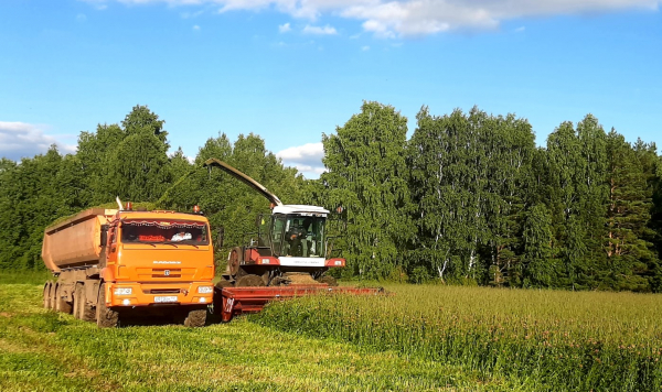 Заготовка кормов в Кунгурском районе перевалила за половину